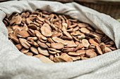 Dried brown beans in a sack