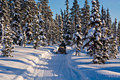 Snowmobiling, Sweden