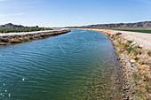 Wellton Mohawk Canal, Arizona, USA