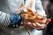 Person holding a red cornsnake