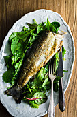 Fried trout on mixed leaf salad