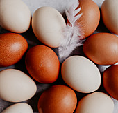 Brown and white chicken eggs (full screen)