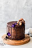 Festive chocolate cream cake