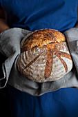 Freshly baked sour dough bread
