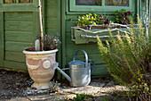 Rosmarin, Balkonkasten, Pflanzkübel und Gießkanne am Gartenhaus
