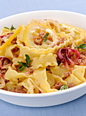 Pasta with salsiccia and onions