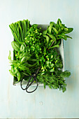 Box of fresh herbs