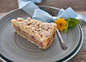 Vegan rhubarb cake with wheat flour, quark substitute, and semolina