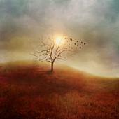 Birds taking flight from a bare tree, illustration