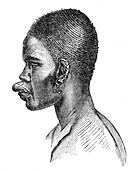 Woman from the Loubah people, 19th century illustration