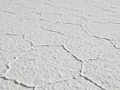 Hexagonal salt tiles, Salar de Uyuni, Bolivia