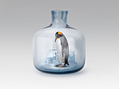 Penguin in jar with melting ice, illustration