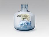 Polar bear in jar with melting ice, conceptual illustration