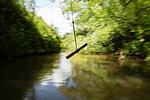 Rope swing swinging above a river