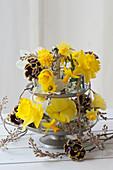Etagere mit Blüten von Narzissen, Stiefmütterchen Ruffles 'Dark Heart' 'Golden Yellow' und Zweigen der Felsenbirne