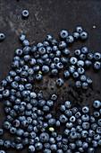 Blueberries on a dark background