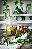 Zutaten für die Herstellung von Geißblattblütensirup