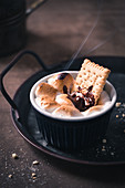 Marshmallows and chocolate with biscuits