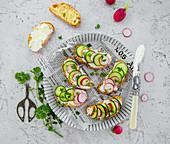 Bruschetta with cheese cucumbers and radishes