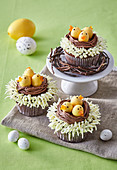 Cocoa cupcakes decorated as Easter nests with chicks