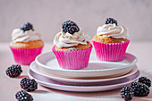 Cupcakes with blackberry cream cheese icing and blackberries