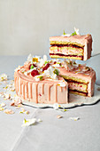 Bellini drip cake (sponge cake with bellini cream and raspberry compote)