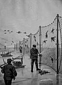Bird catchers, Baltic Sea, 19th century illustration