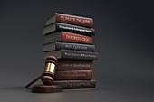 Environmental legislation textbooks next to gavel, illustration