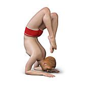 Man in scorpion yoga position, illustration