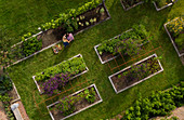 Couple harvesting vegetables in garden with raised beds