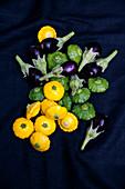 Yellow patissons, green patissons and mini eggplants