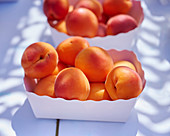 Fresh apricots in a cardboard bowl
