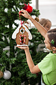 Girl hangs a gingerbread house on a Christmas tree