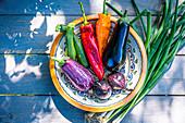 Mediterranean vegetables, fresh from the garden