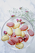 Madeleines, white and pink