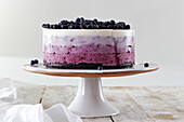 Blueberry Ombre Cake (Raw Baking)