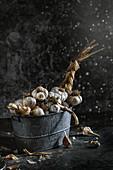 Garlic braid in a vintage tub