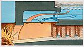 Roman baths, illustration