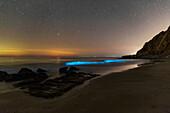 Bioluminescent plankton in Persian Gulf