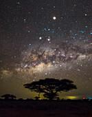 Milky Way, Amboseli National Park, Kenya