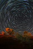 Northern star trails over desert, Iran