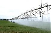 Computerised mobile irrigation