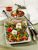 Summer ratatouille salad with grilled goat's cheese rounds