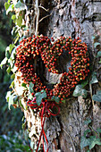 Herz aus Mini-Hagebutten an Baumstamm