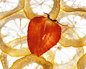 Strawberry and lemon slices in translucent light