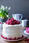 Sponge cake with butter cream and raspberries