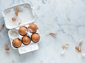 Eggs, Carton, Feathers, Marble