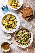 Potato salad with cucumber radish salad and seeded bread on the table