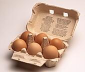 Paper mache egg box and six brown free range chicken eggs