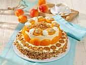 Apricot yoghurt ice cream cake with amaretti